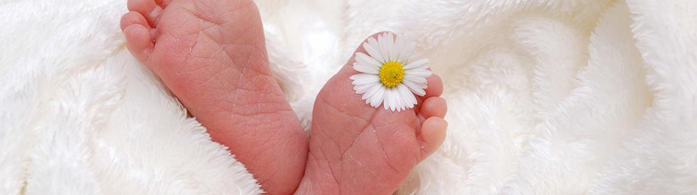 Wie lange dauert eine Geburt? - Eine Hand, die rosa und weiße Blumen hält - Gesundheit