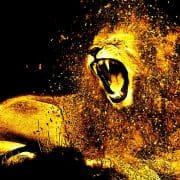 … das Musical König der Löwen?